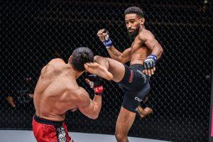 Seni bela diri dalam Martial Art Mixed shark fight